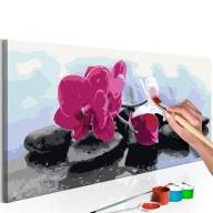 Obraz do samodzielnego malowania  Orchidea i kamienie zen