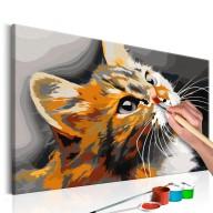 Obraz do samodzielnego malowania  Rudy kot