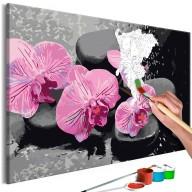 Obraz do samodzielnego malowania  Orchidea i kamienie zen (czarne tło)
