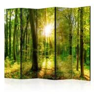 Parawan 5częściowy  Promienie lasu [Room Dividers]