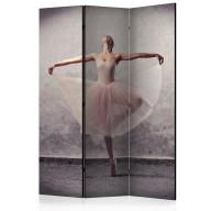 Parawan 3częściowy  Balet  poezja bez słów [Room Dividers]