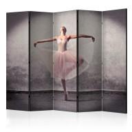 Parawan 5częściowy  Balet  poezja bez słów [Room Dividers]