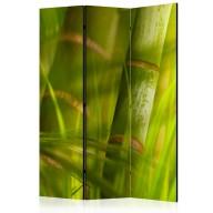 Parawan 3częściowy  bambus  natura zen [Room Dividers]