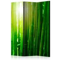 Parawan 3częściowy  Słońce i bambus [Room Dividers]