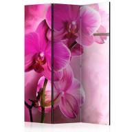 Parawan 3częściowy  Różowa orchidea [Room Dividers]