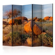 Parawan 5częściowy  Pejzaż afrykański, Namibia II [Room Dividers]