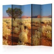 Parawan 5częściowy  Pustynny krajobraz, Namibia II [Room Dividers]