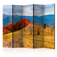 Parawan 5częściowy  Kolorowy jesienny pejzaż, Karpaty II [Room Dividers]