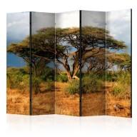 Parawan 5częściowy  W krainie Samburu, Kenia II [Room Dividers]