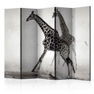 Parawan 5częściowy  Żyrafy II [Room Dividers]