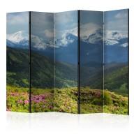 Parawan 5częściowy  Wiosenny krajobraz górski II [Room Dividers]