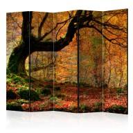 Parawan 5częściowy  Jesień, las i liście II [Room Dividers]