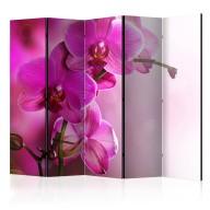 Parawan 5częściowy  Różowa orchidea II [Room Dividers]