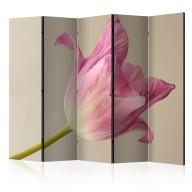 Parawan 5częściowy  Pink tulip II [Room Dividers]