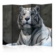 Parawan 5częściowy  Tygrys bengalski w zoo II [Room Dividers]