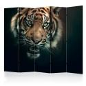 Parawan 5-częściowy - Tygrys bengalski II [Room Dividers]