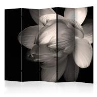 Parawan 5częściowy  Kwiat lotosu II [Room Dividers]