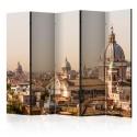 Parawan 5-częściowy - Rzym - widok z lotu ptaka II [Room Dividers]
