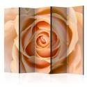 Parawan 5-częściowy - Peach-colored rose II [Room Dividers]