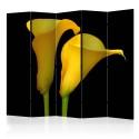 Parawan 5-częściowy - Dwie żółte kalie na czarnym tle II [Room Dividers]