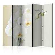 Parawan 5częściowy  Biała orchidea II [Room Dividers]