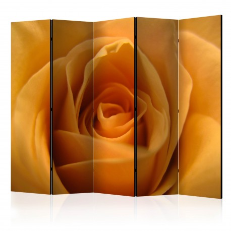 Parawan 5częściowy  Żółta róża  symbol przyjaźni II [Room Dividers]