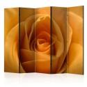 Parawan 5-częściowy - Żółta róża - symbol przyjaźni II [Room Dividers]