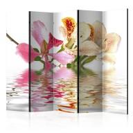 Parawan 5częściowy  Kwiaty tropikalne  drzewo storczykowe (bauhinia) II [Room Dividers]